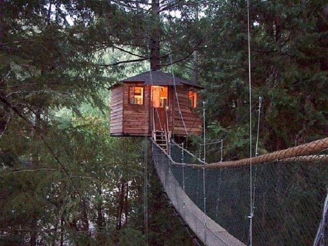 Khách sạn trên cây Out'N'About đầy ấn tượng