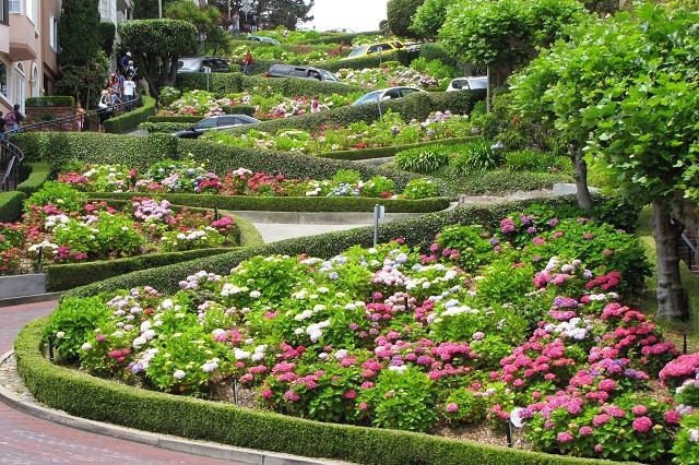 Lombard con đường ngoằn ngoèo với nhiều hoa đẹp nhất ở San Francisco