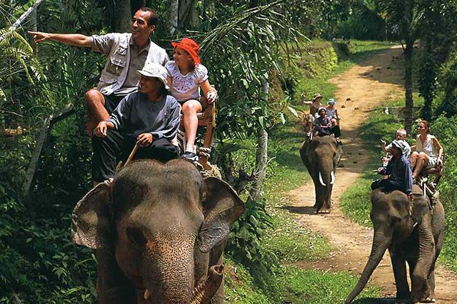 Chuyến tham quan trên lưng voi đầy thú vị tại Bali