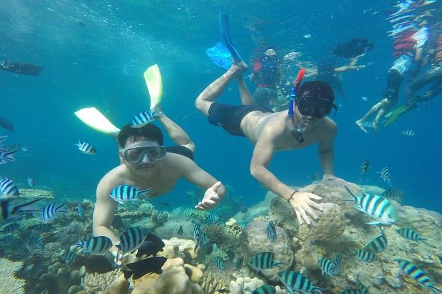 Pulau Menjangan – vùng vịnh lặn biển lý tưởng nhất Bali