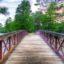 Có gì đặc biệt tại hai công viên hút khách nhất Houston?