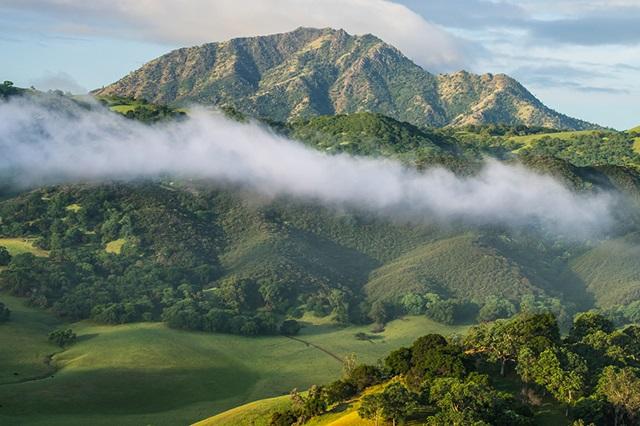 Đến Tamalpais vào mùa hè du khách sẽ được chứng kiến cảnh sương mù tuyệt đẹp