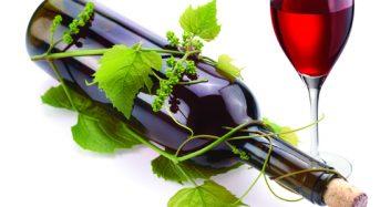 Tìm hiểu, giới thiệu về rượu vang